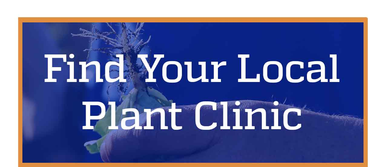 find your local plant clinic